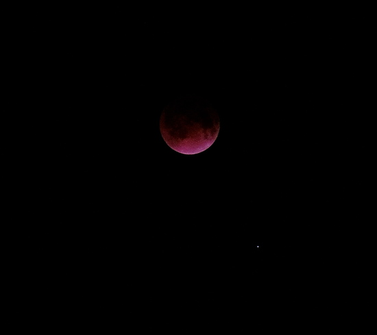 "Lunar Eclipse ""Blood Moon"""