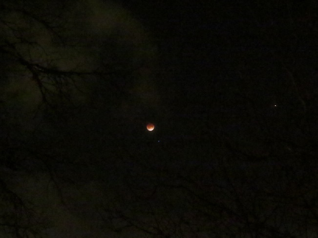 Blood Moon, Spica and Mars Moncton, New Brunswick Canada
