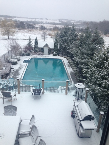 Why did I open the pool on the weekend Claremont, Ontario Canada