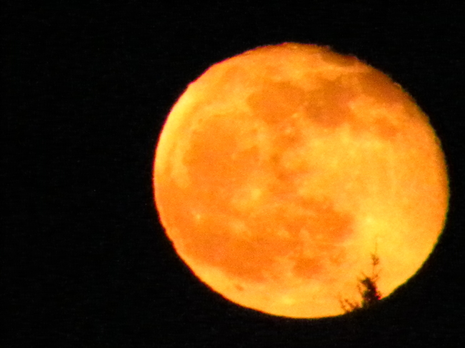 moon Saint John, New Brunswick Canada