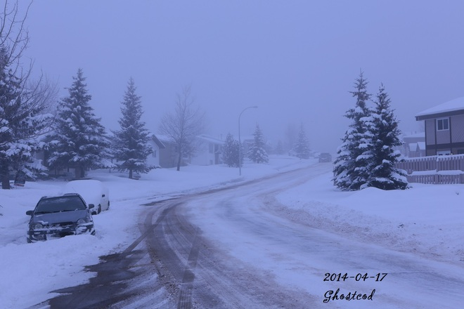 Foggy and clean up over a foot .. Swan Hills, Alberta Canada