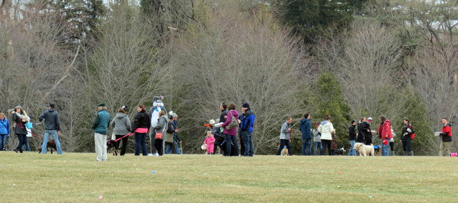 Service dogs Easter Egg Hunt Guelph, Ontario Canada