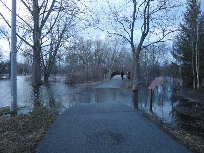 flooding in Beavermeade