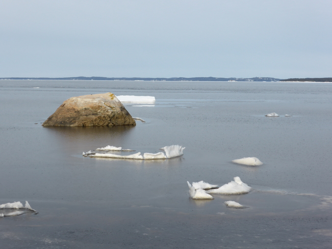 Ice Birchy Bay, Newfoundland and Labrador Canada