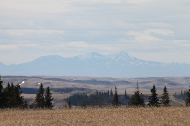 One of the Sweet Grass Hills Elkwater, Alberta Canada