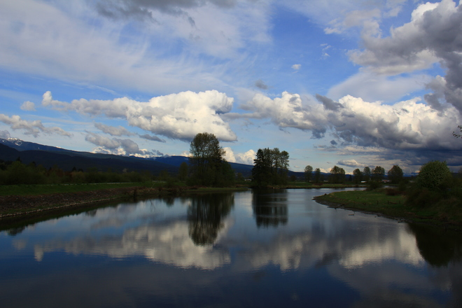 Reflections on the Alouette River Pitt Meadows, British Columbia Canada