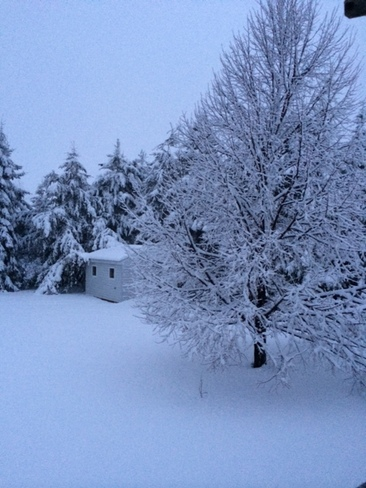 Beautifull but a little late Thunder Bay, Ontario Canada