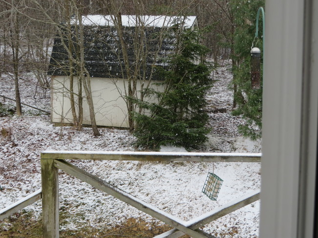 Snowing again on Apr 25th Quispamsis, New Brunswick Canada