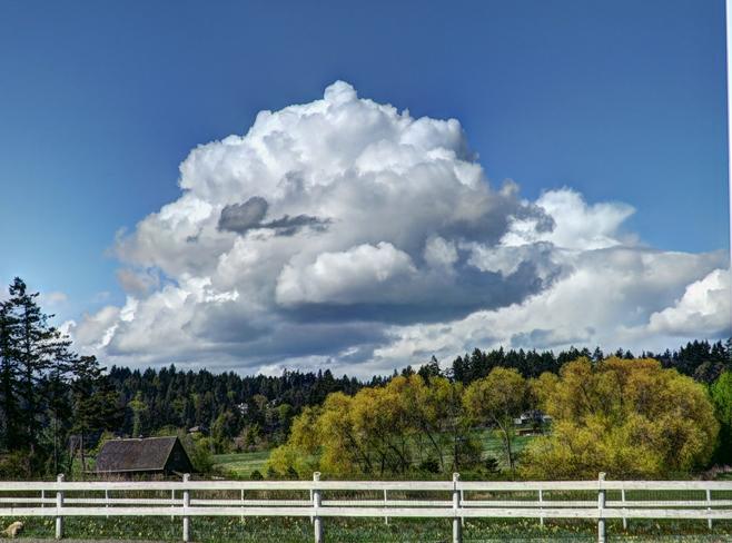 Massive Cumulus Clouds Over Saanich Saanich, British Columbia Canada