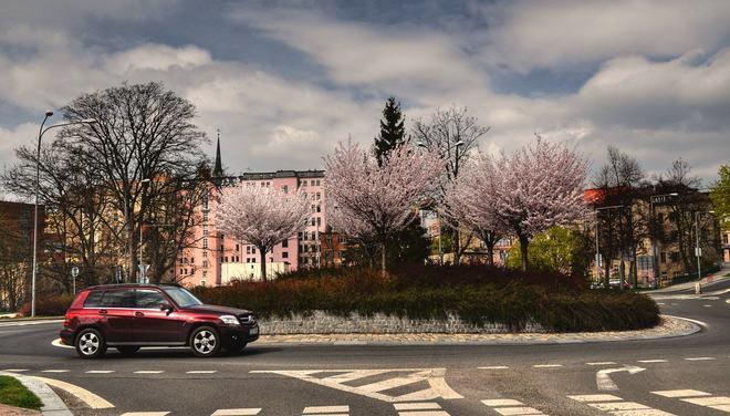 A colorful springtime. Jablonec nad Nisou, Czech Republic