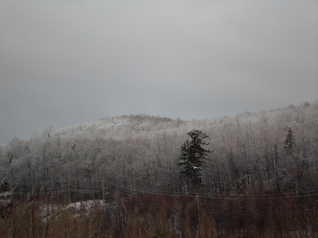 FROSTED TREES in Elliot Lake Elliot Lake, Ontario Canada