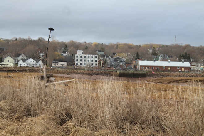 Wolfville is Crowing about the New Skyline Wolfville, Nova Scotia Canada