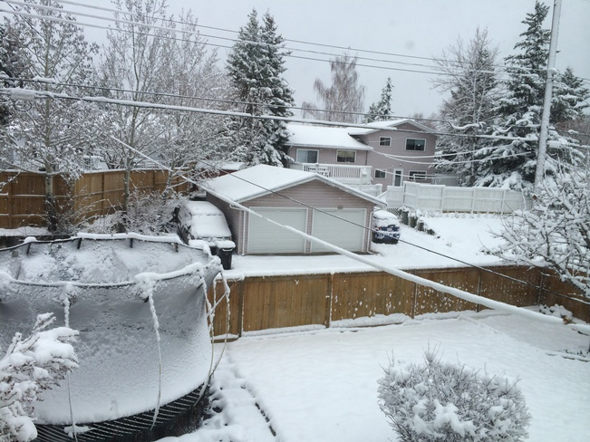 Snow day in May Calgary, Alberta Canada