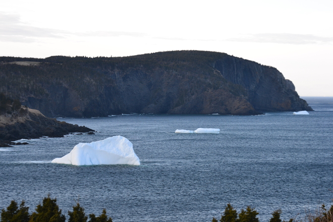 Three Torbay, Newfoundland and Labrador Canada
