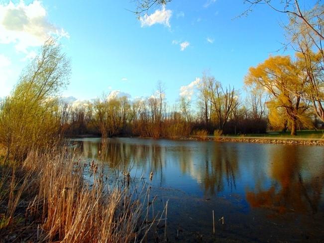 Scenic North Ridge, Ontario Canada