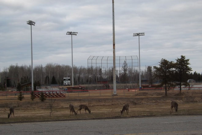 WAITING FOR BASEBALL SEASON TO START Thunder Bay, Ontario Canada
