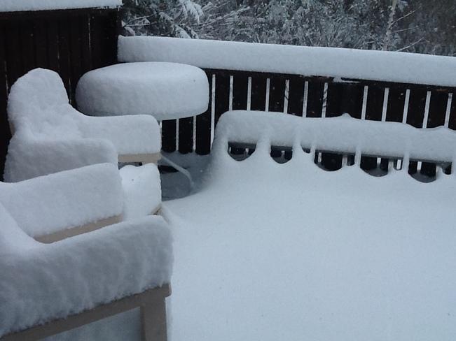 Spring??? Appleton, Newfoundland and Labrador Canada