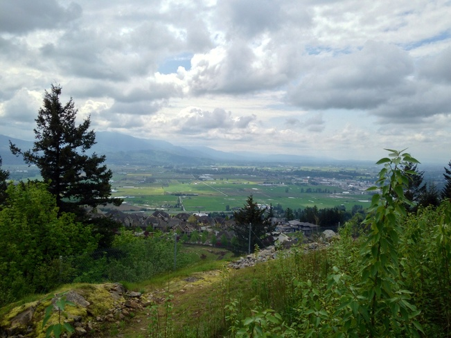 View from Eagle Mountain! Abbotsford, British Columbia Canada