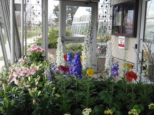 Greenhouse Flowers. Toronto, Ontario Canada