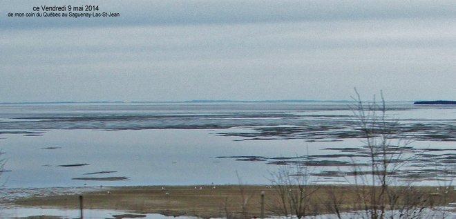le Goéland au loin Roberval, Québec Canada
