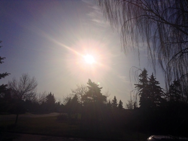 Morning Sunshine Edmonton, Alberta Canada