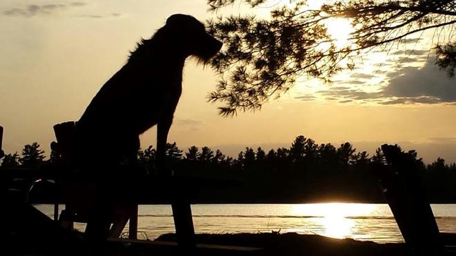 bearlake sunset Bear Lake, Ontario Canada