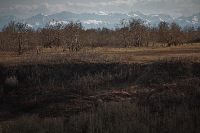 Finding peace in the city.Nose hill park. Calgary, Alberta Canada