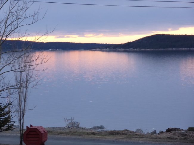 Calm Evening Birchy Bay, Newfoundland and Labrador Canada