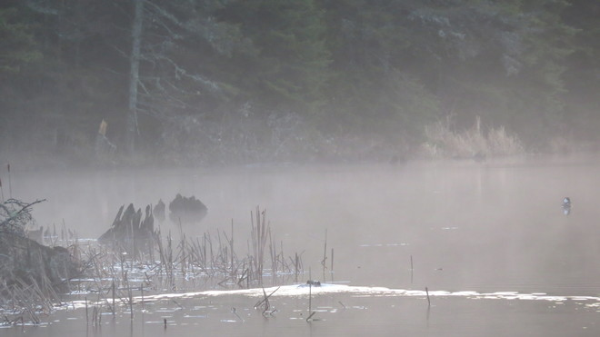 Beaver Trail Espanola, Ontario Canada