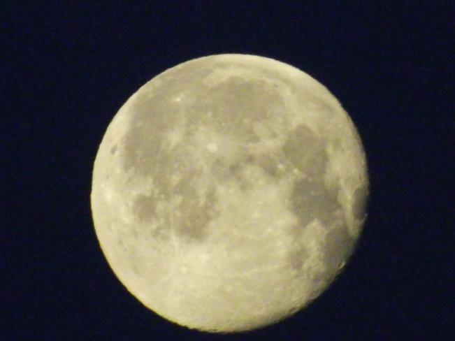 moon New Minas, NS