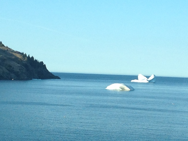 Icebergs in Torbay Torbay, Newfoundland and Labrador Canada
