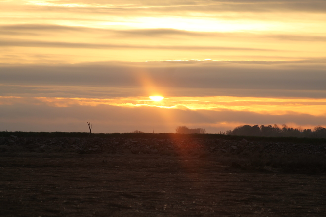 Wilsack says Sunny Day ahead in Wolfville, Nova Scotia Old Dyke Lane, Wolfville, NS, Canada