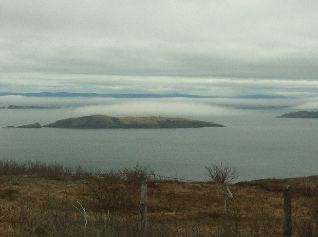 islands in the fog Carbonear, Newfoundland and Labrador Canada