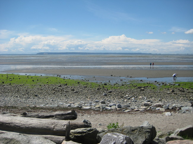 The tide is out at Crescent Beach Crescent Beach, Surrey, BC