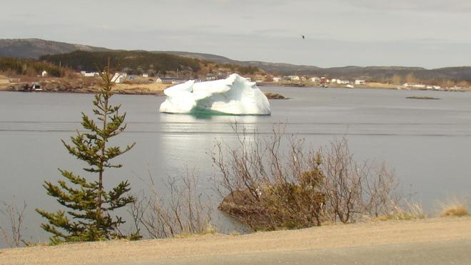 iceberg Catalina, Newfoundland and Labrador Canada