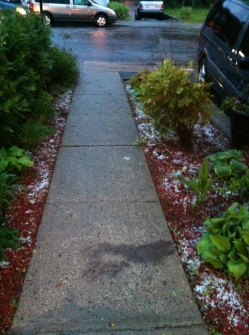 Cote Des Neiges hail May 25 Montreal, QC H3W 1K6