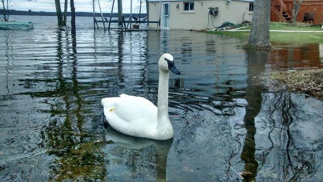 road lake Orillia, Ontario