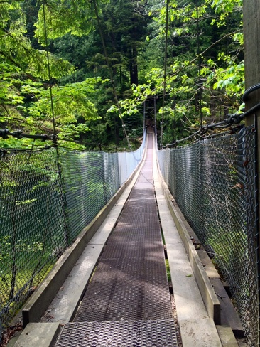 SUSPENSION BRIDGE Anmore, British Columbia Canada