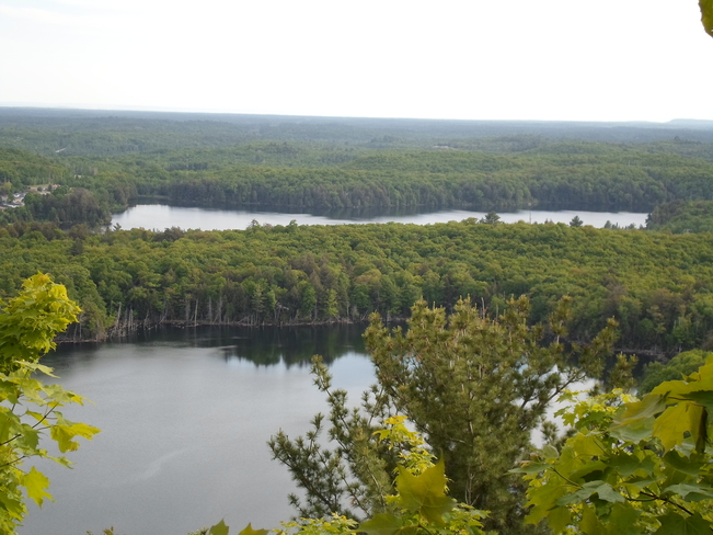 Scene From Fire Tower Lookout E.L. Elliot Lake, Ontario Canada