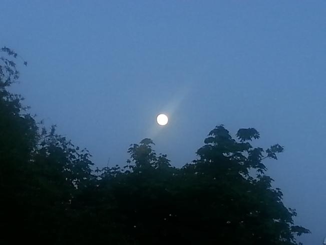 Rays Moon Dartmouth, NS