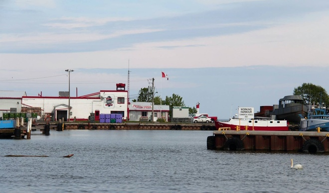 In the Harbour Port Dover, Ontario Canada