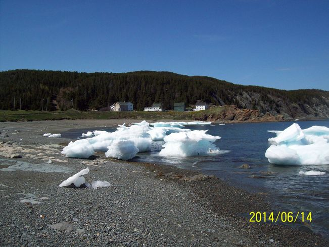 artic ice on beach in Wild Cove, Twillingate,NL. Twillingate, NL