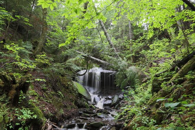 kent county nb tallest waterfall Sainte-Marie-de-Kent, NB