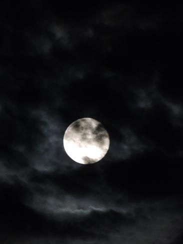 Friday 13th Full Moon Lewisporte, NL