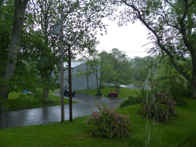 Rain Shelburne, NS