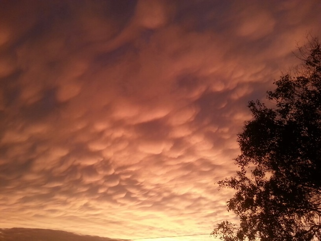More Pics of Sunset after Storm Foxboro, Belleville, ON