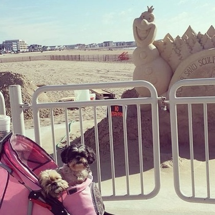 Spencer and Bella and sand sculptures at hampton beach