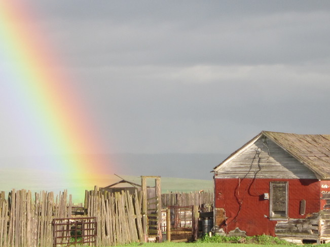 Pot o Gold in the backyard Maple Creek, Saskatchewan