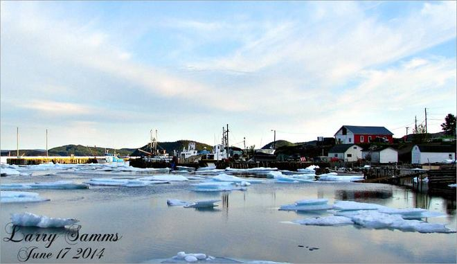 """""""Drift Ice In Miles Cove"""" Miles Cove, NL"""