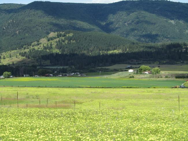 Fields vernon bc